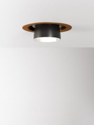 Claque downlight in bronze by Fabbian from Gineico Lighting